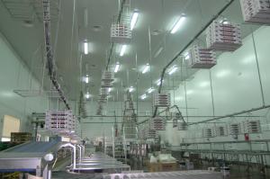 Sala de manipulación. Una de nuestras instalaciones realizadas con Evaporador Centrífugo por conductos instalados sobre falso techo y con salida de aire mediante difusores circulares.