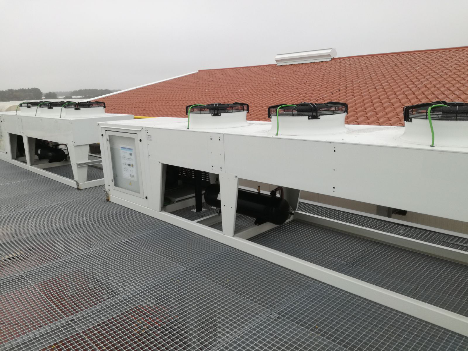 Unidades condensadoras carrozadas sobre soporte metálico para cámara de conservación de plantas de frambuesas.